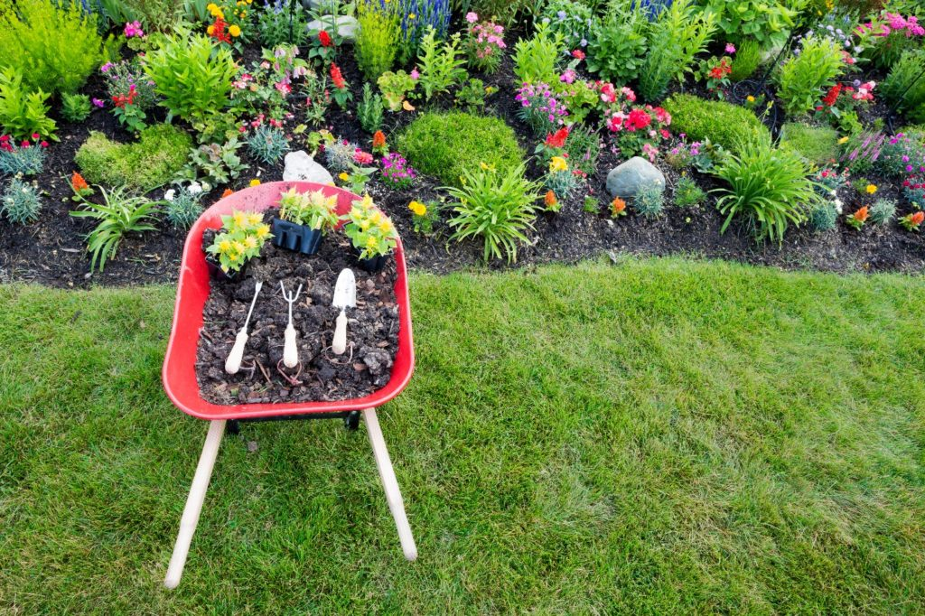 Spring Landscaping Tips spring into landscaping, virginia! - virginia green lawn care company