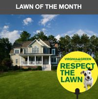 Lawn of the Month