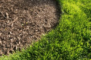 How To Prevent Weeds From Growing In Your Mulch Bed Virginia Green