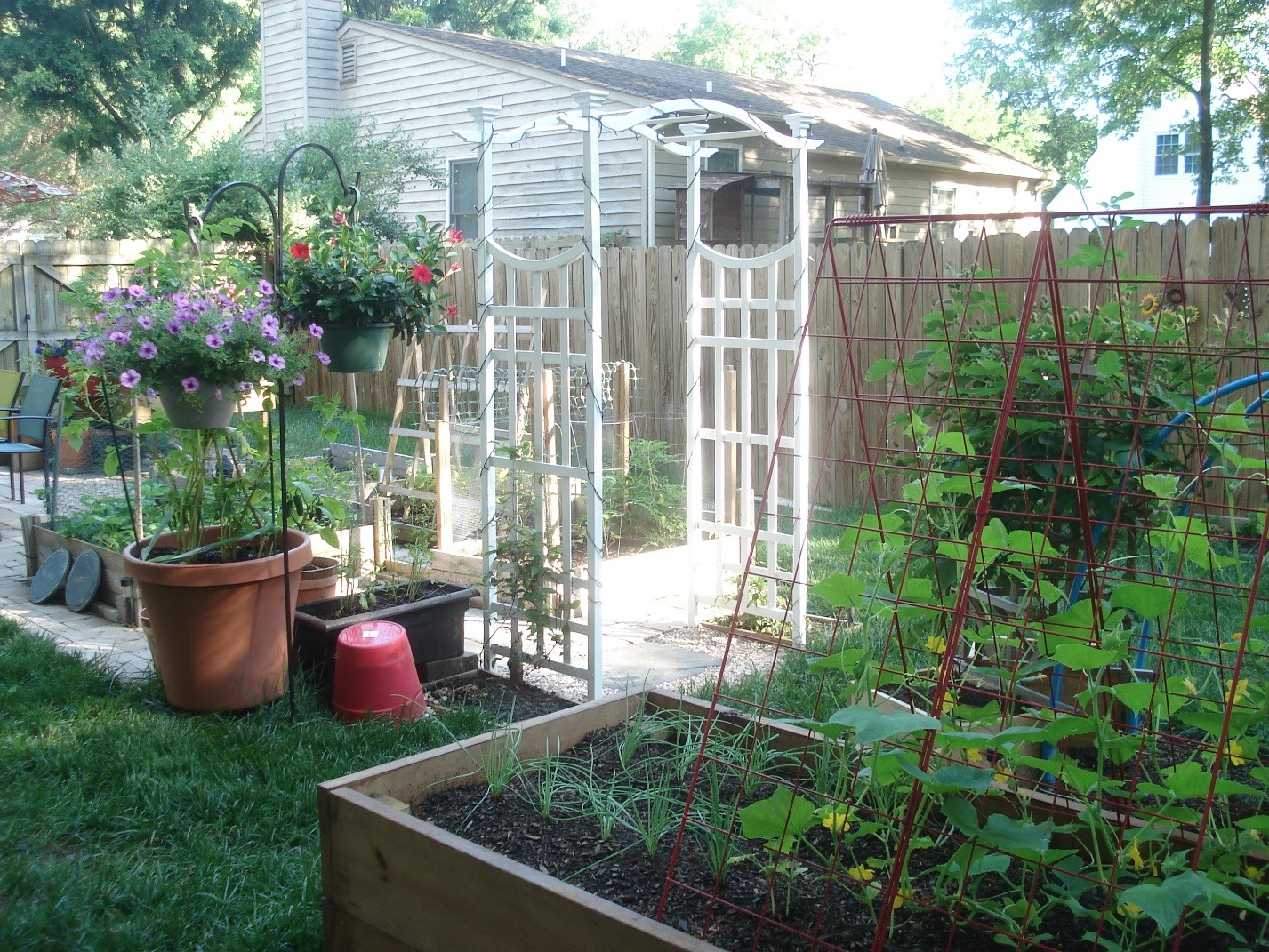 Helpful Tips and Ideas for Box Gardens in Ashland Virginia Green