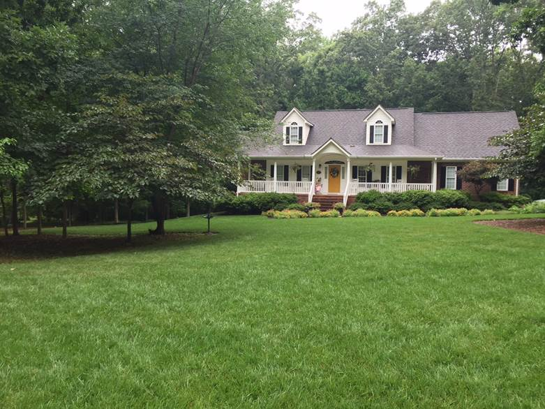 Colonial Heights Lawn Care Charlottesville Virginia Green