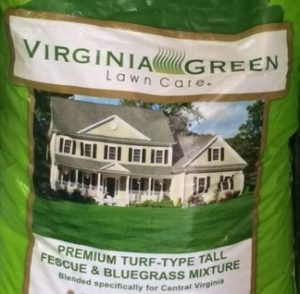 What S The Best Grass Seed For My Colonial Heights Lawn
