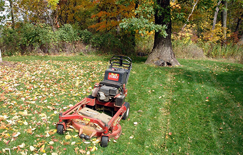 The Importance of Leaf Removal - Virginia Green Lawn Care ...