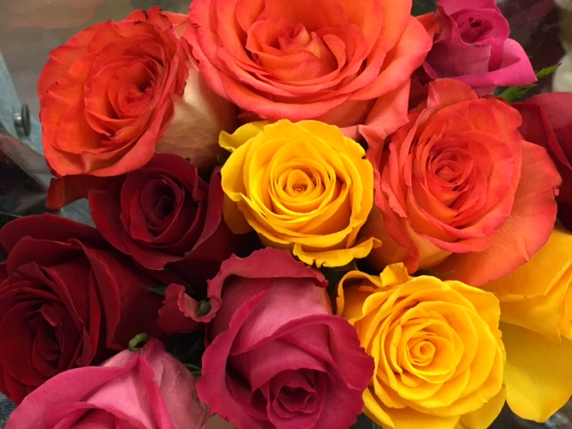 The Color Of A Rose The Meaning Of Different Rose Colors