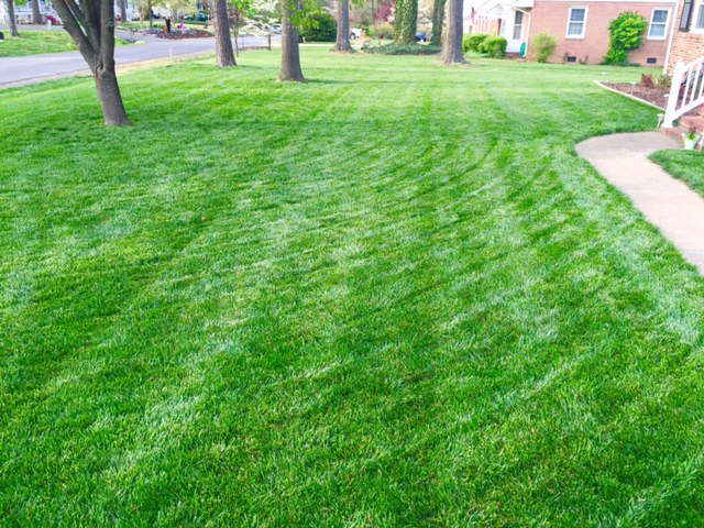 how to create a beautiful lawn