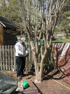 Did The Rain Wash Fertilizer Away Virginia Green Lawn Care