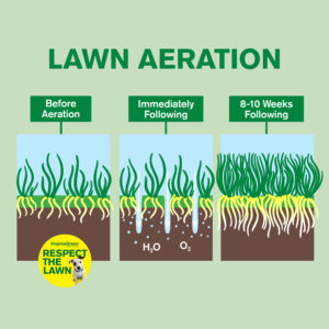 The Best Time To Aerate Your Lawn Virginia Green Care